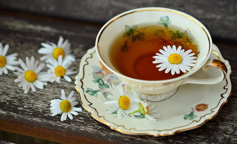 بهترین مارک چای ساز
